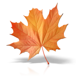 autumn_leaf_1600_clr_6347